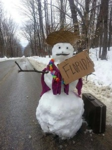 Snowman wants to go to Florida
